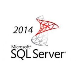 Microsoft SQL Server 2014 CALs