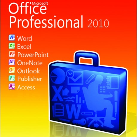 ms 2010 professional plus