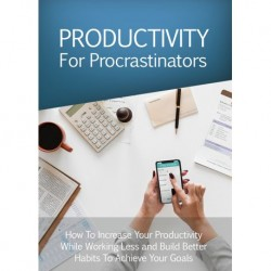 Productivity for Procrastinators  VIP Package