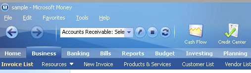 Microsoft Money Home and Business tabs